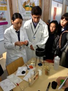 Educación y tecnología a servicio en destaque en la educación adventista en Chile