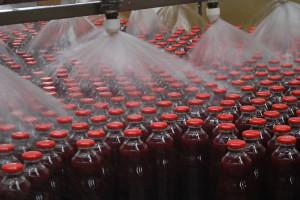 El jugi de uva integral será el primer producto de la empresa a ser comercializado en el mercado chino. El objetivo es ampliar la cartera con proteínas vegetales y platos listos vegetarianos.