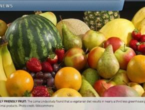 estudio-descubre-que-dieta-vegetariana-es-herramienta-efectiva-contra-el-cambio-climatico