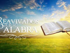 Seguidores del proyecto Reavivados por su Palabra llegan al libro de Marcos.