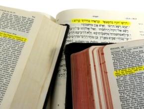 Millones de personas son impactadas con nuevas traducciones de la Biblia.