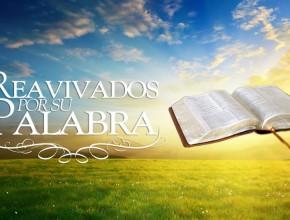 Este 11 de mayo, proyecto Reavivados por su Palabra llega a I Timoteo.